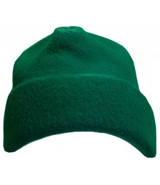 Turtle Fur Beanie Green