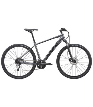 Giant Giant Roam 2 Disc (2020) Charcoal/Black