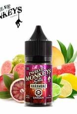 Twelve Monkeys-Salt Twelve Monkeys-Harambae Salt(30ml)