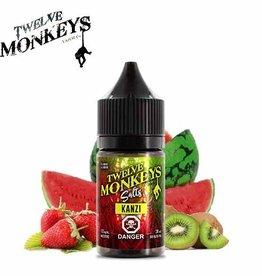 Twelve Monkeys-Salt Twelve Monkeys-Kanzi Salt(30ml)
