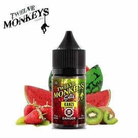 Twelve Monkeys-Salt Twelve Monkeys-Kanzi Salt(30ml)