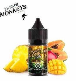Twelve Monkeys-Salt Twelve Monkeys-Mangabeys Salt(30ml)