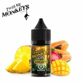 Twelve Monkeys-Salt Twelve Monkeys-Mangabeys Salt(30ml)