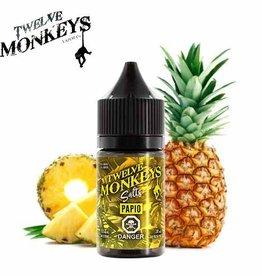 Twelve Monkeys-Salt Twelve Monkeys-Papio Salt(30ml)