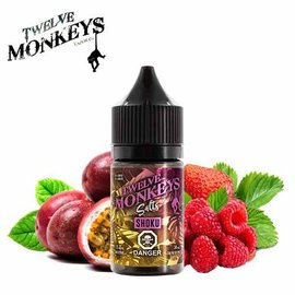 Twelve Monkeys-Salt Twelve Monkeys-Shoku Salt(30ml)
