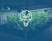 GROW LIGHTING