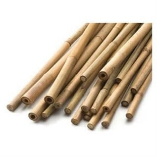 Bamboo 6 FOOT BAMBOO STAKE SINGLE