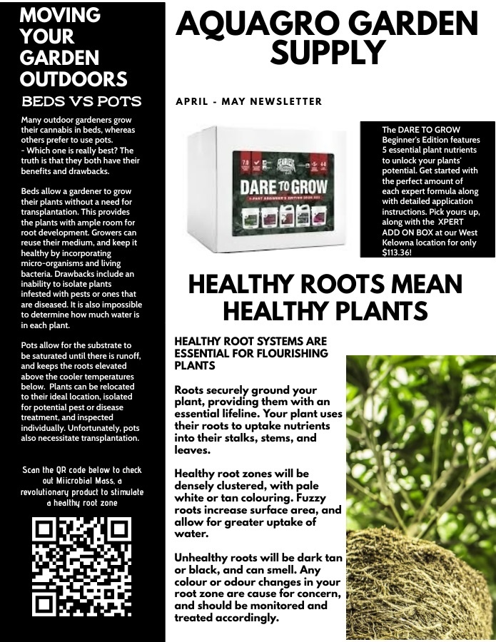 AQUAGRO COMMUNITY NEWSLETTER - SHOULD YOU GROW IN POTS OR IN BEDS? (APRIL - MAY EDITION)