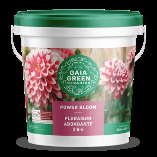 Gaia Green GAIA GREEN POWER BLOOM 2KG