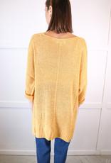 HUSH 3/4 Slv hi low hem sweater