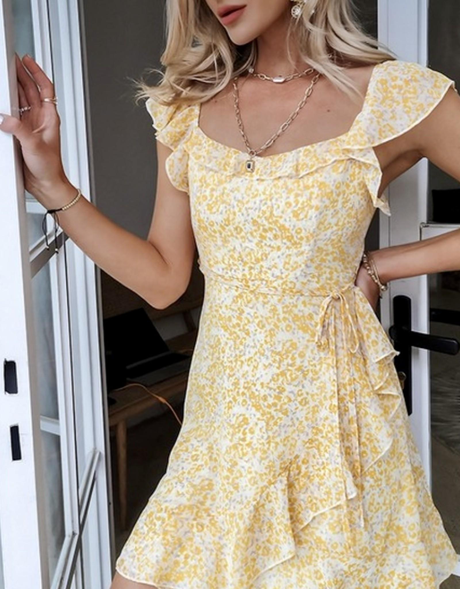 HUSH GABRIELLA mini dress