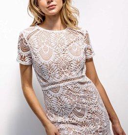 HUSH CARA lace dress