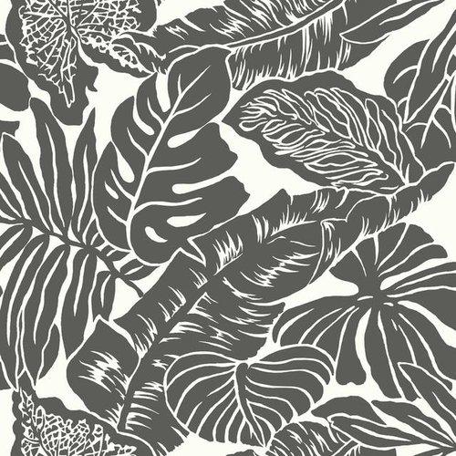 Valdivian Wallpaper - Black