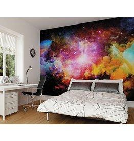 Galaxy Stars Wall Mural
