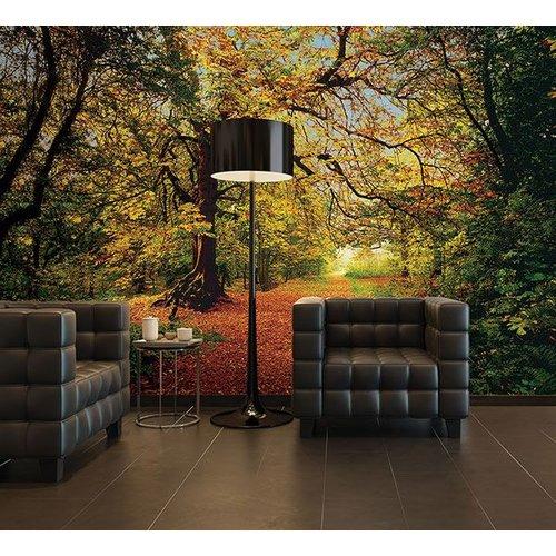 Autumn Forest Wall Mural