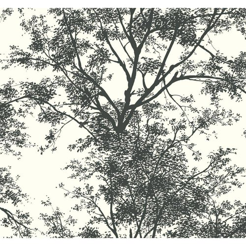 Tree Silhouette Sidewall Wallpaper - Black/White