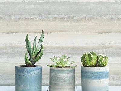 Watercolor stripe - Neutral