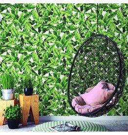 York Palm - Green