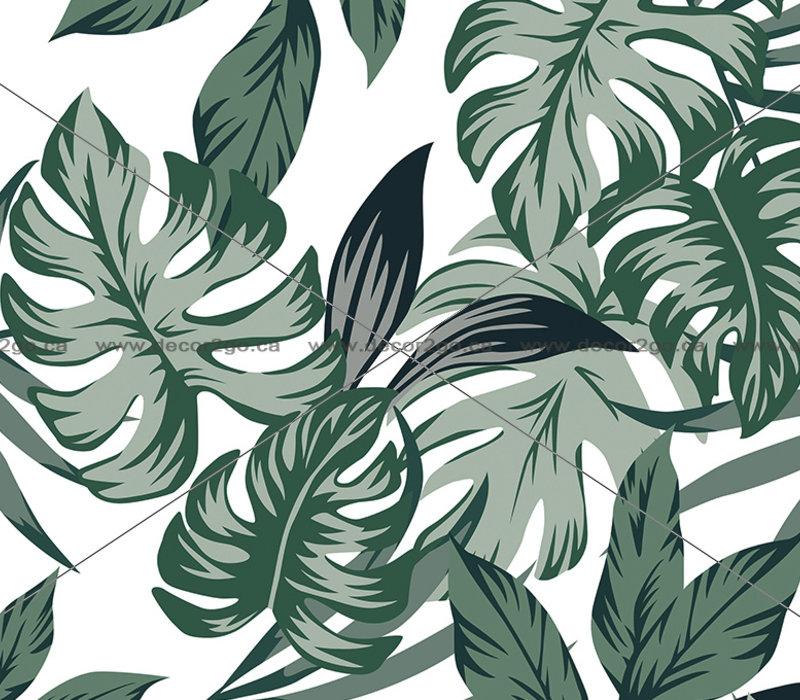 Tropical Big Green Leaves