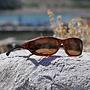 Sunglasses Cocoons MX Tortoise/Amber