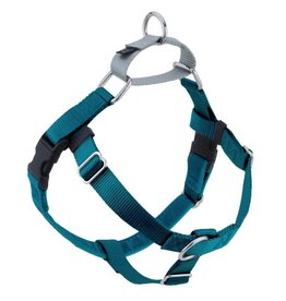 "2 Hounds Design 1"" Freedom Harness and Leash - Teal"
