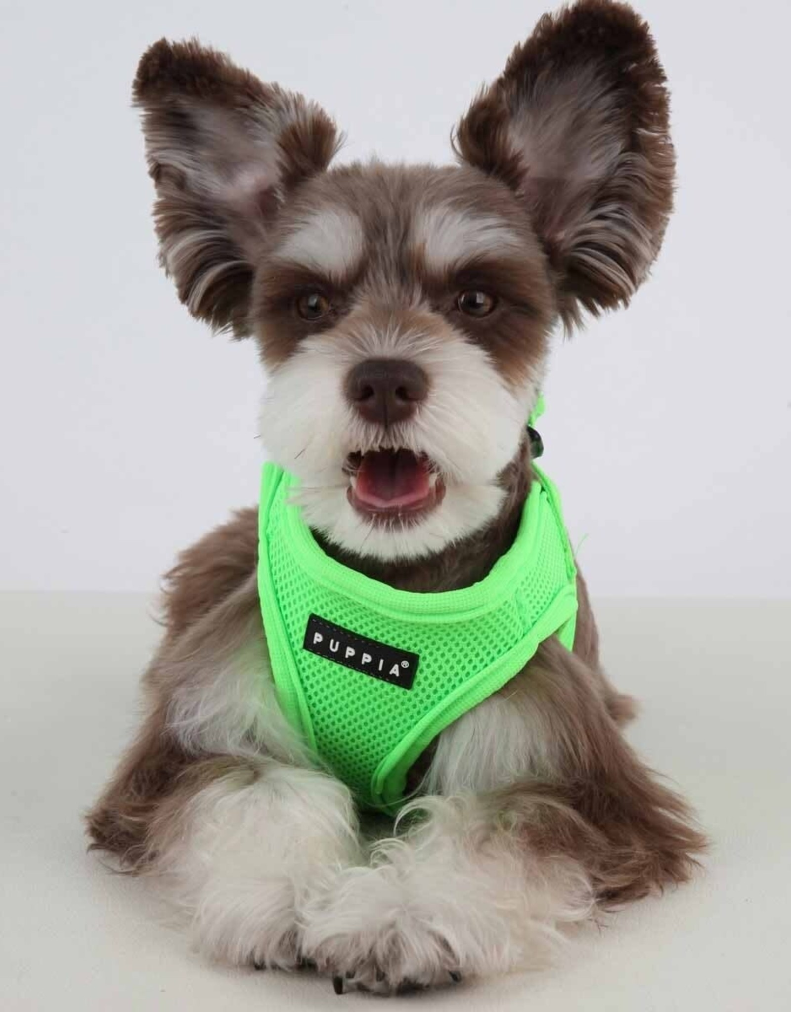 Puppia Puppia Neon Green Harness