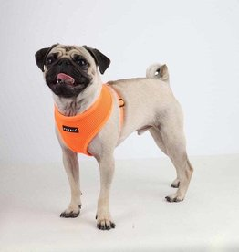 Puppia Puppia Neon Orange Harness
