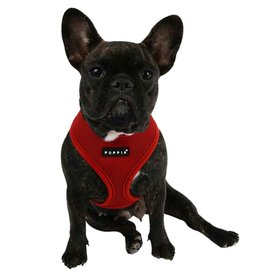 Puppia Puppia Wine Harness