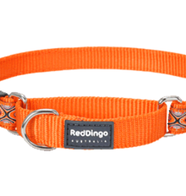 Red Dingo Red Dingo Snake Eyes Orange Martingale Collar