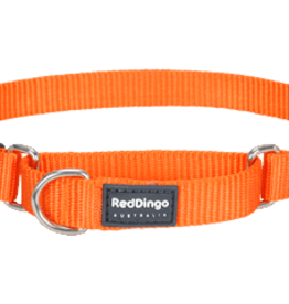 Red Dingo Red Dingo Orange Martingale Collar