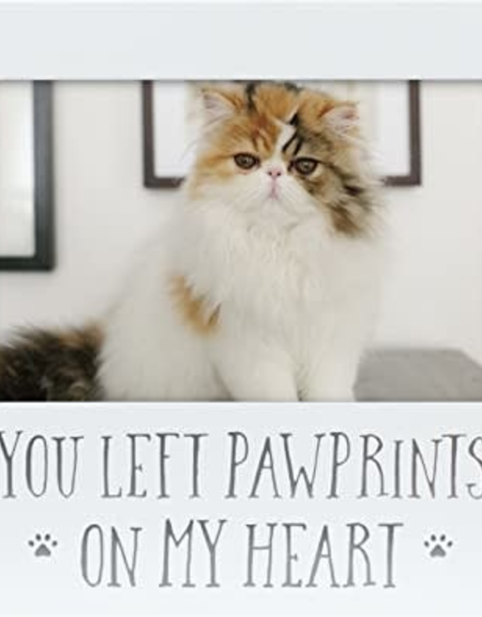 Pearhead You Left Pawprints On My Heart Sentiment Frame