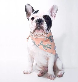 The Foggy Dog Foggy Dog Cactus Garden Bandana