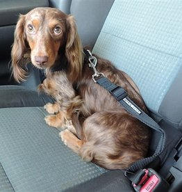 Doggie Design Seatbelt Strap Dog Car Leash