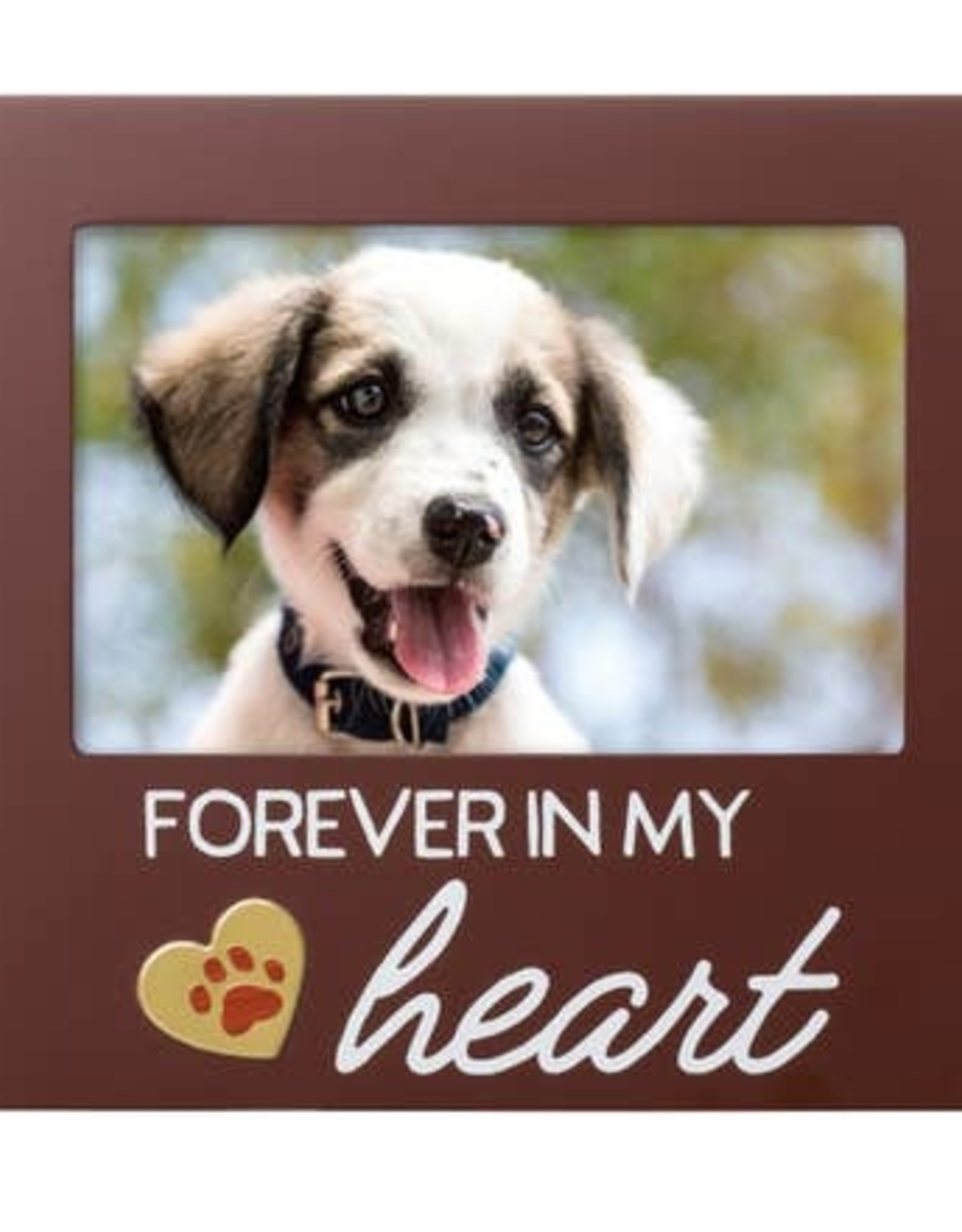 Pearhead Forever In my Heart Pet Memorial Frame-Espresso