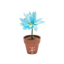 ALLTIMERS Mini Planter