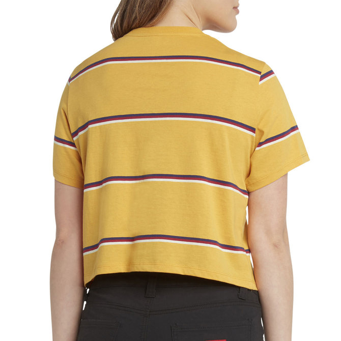 DICKIES CROPPED STRIPED TEE YELLOW