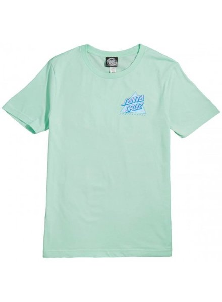 Santa Cruz Skateboards Mint Not A Dot Boyfriend Tee