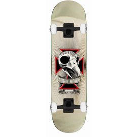 Tony Hawk Skull2 Chrom Complete 7.75