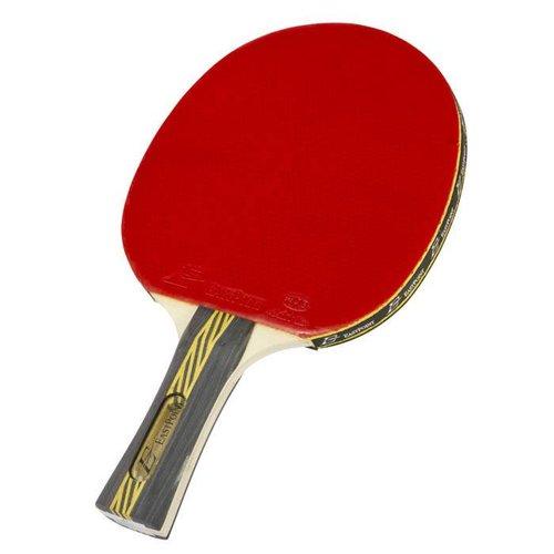 Paddle Ping Pong
