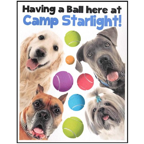 Dogs and Balls Notecards