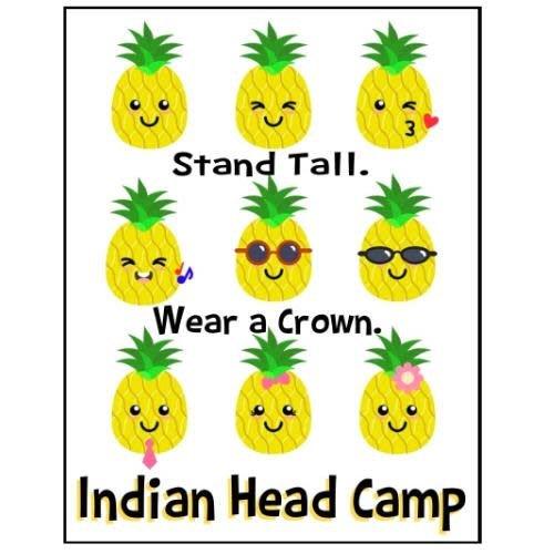 Pineapple People Notecards