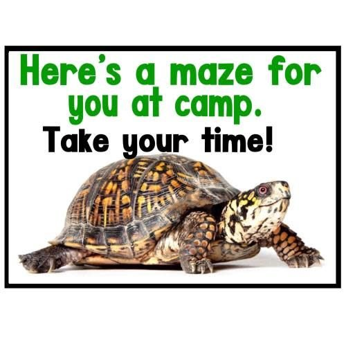 Turtle Maze Camp Card