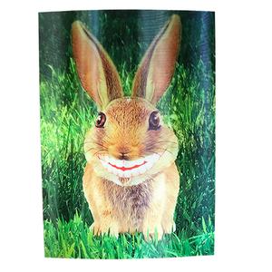 Smiling Rabbit 3-D Postcard