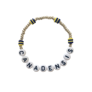 Gold Bead and Camp Color Bracelet Set