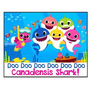 Baby Shark Notecards