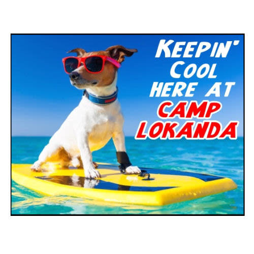 Surfs Up Dog Notecards