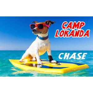 Surfer Dog Custom Poster