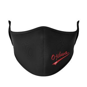 Camp Ojibwa Face Mask
