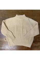 CHUNKY POINTELLE TURTLE NECK SWEATER
