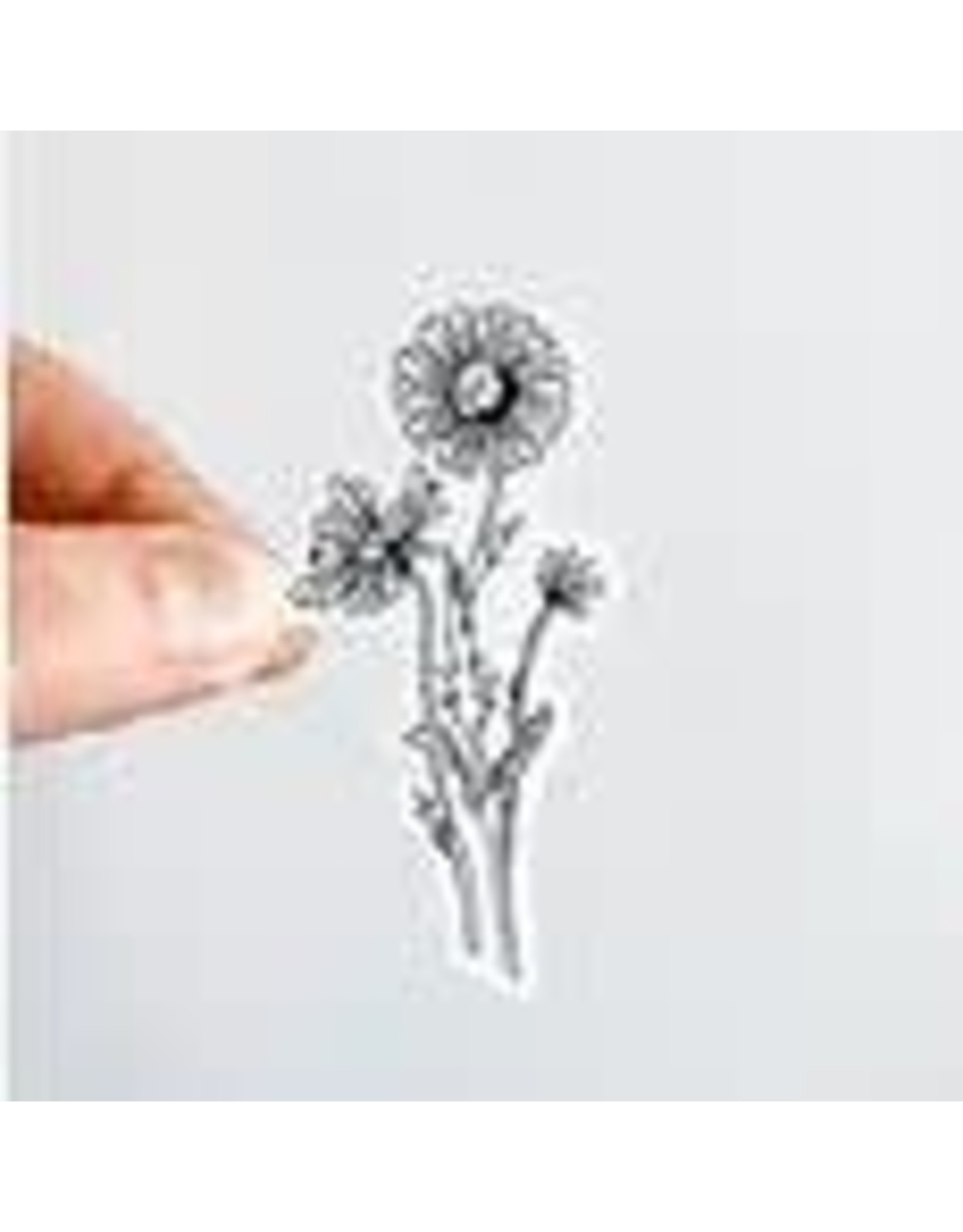 WILDFLOWER PAPER COMPANY DAISY BLACK AND WHITE FLORAL STICKER